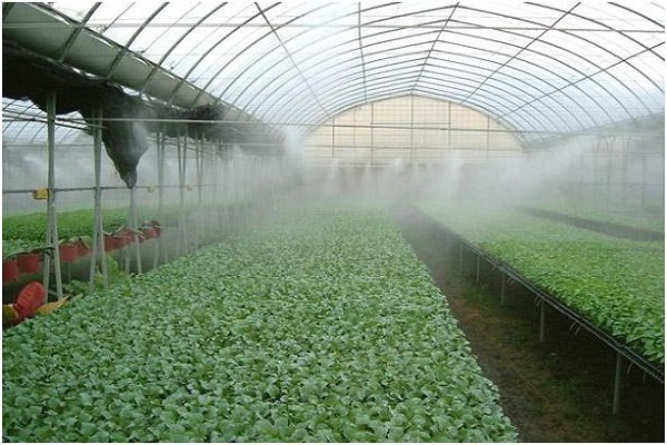 What is High Pressure Fogging System?