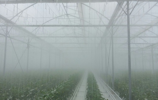High-Pressure Fog Systems for Different Production Areas