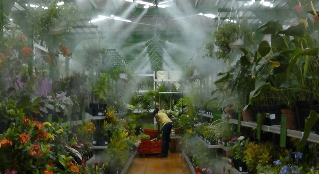 What is the Fog System for Greenhouse Areas?