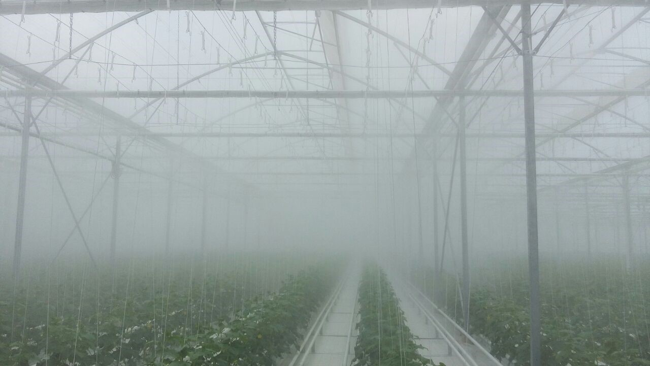 What is the Importance of High Pressure Fog Systems for Products