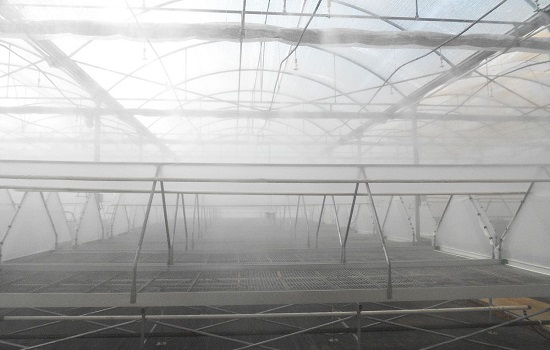What are the Advantages of Fog Systems