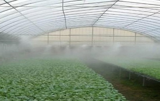 Mist System is Important for Farms